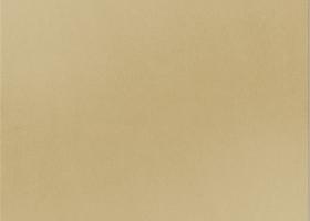 Керамогранит Бежевый матовый 600х600х10